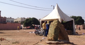 منظر يملأ الأزقة في الدار البيضاء